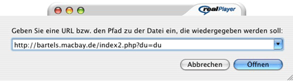 RealPlayer-Dialogfeld